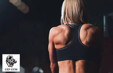Cef Gym - Donna