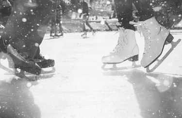Ice Park Ferrara - Pista