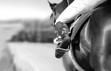 Scuderia del Borgo - Equitazione