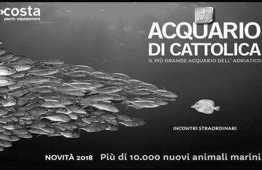 Acquario di Cattolica - copertina