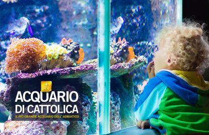 Acquario di Cattolica - Locandina