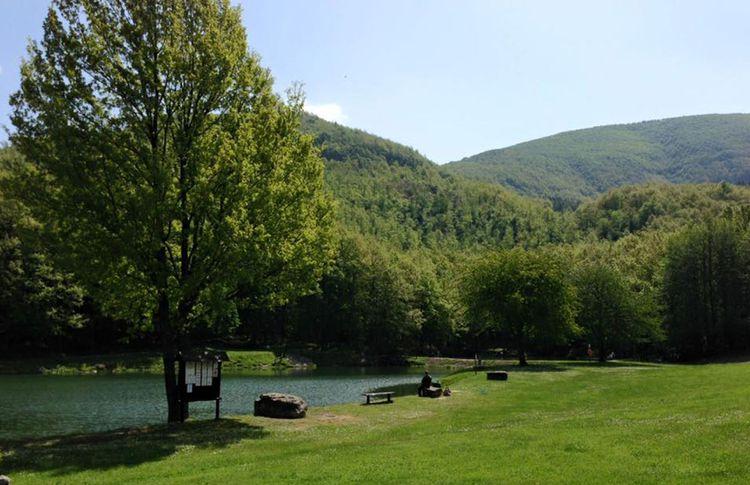 Coupon men padellaro al ristorante lago lungo di san - Lago pontini san piero in bagno ...