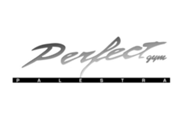 Perfect Gym - Logo